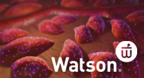 Watson Pharma Portfolio