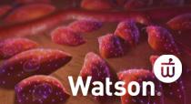 Watson Pharma Portfolio